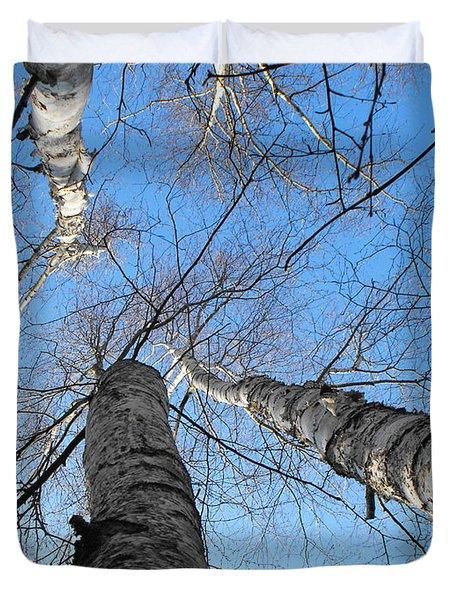 Birch Group In Winter Duvet Cover