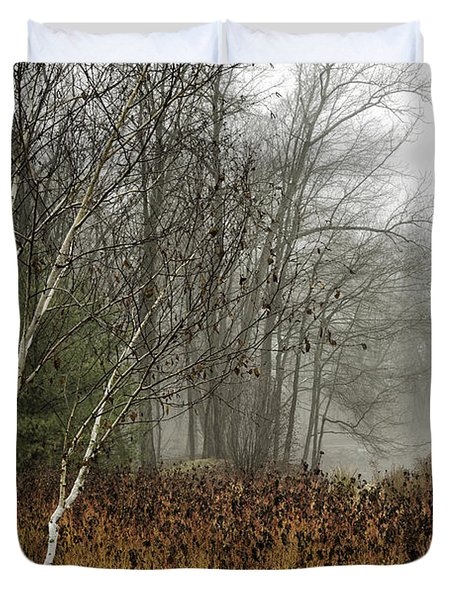 Birch In Winter Duvet Cover by Fran Gallogly