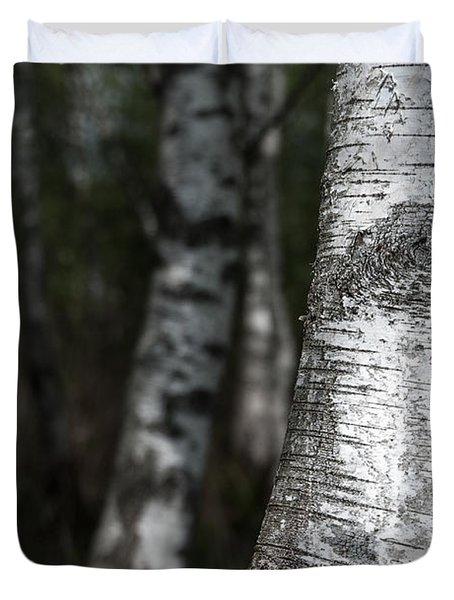 birches II Duvet Cover by Hannes Cmarits