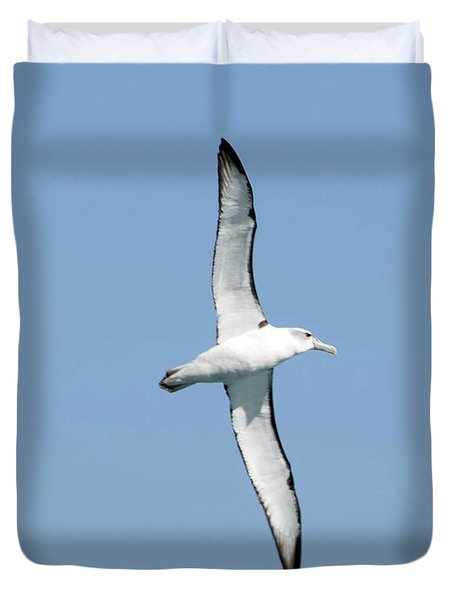 Arbornos Flying In New Zealand Duvet Cover