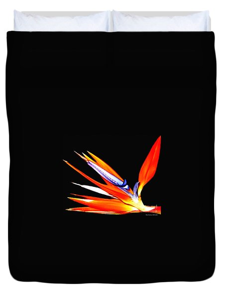 Bird Of Paradise Flower With Oil Painting Effect Duvet Cover by Rose Santuci-Sofranko