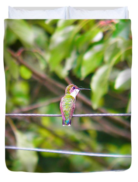 Duvet Cover featuring the photograph Bird On A Wire by Nick Kirby