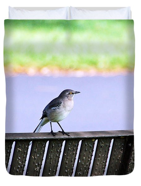 Bird On Bench Duvet Cover by Aimee L Maher Photography and Art Visit ALMGallerydotcom
