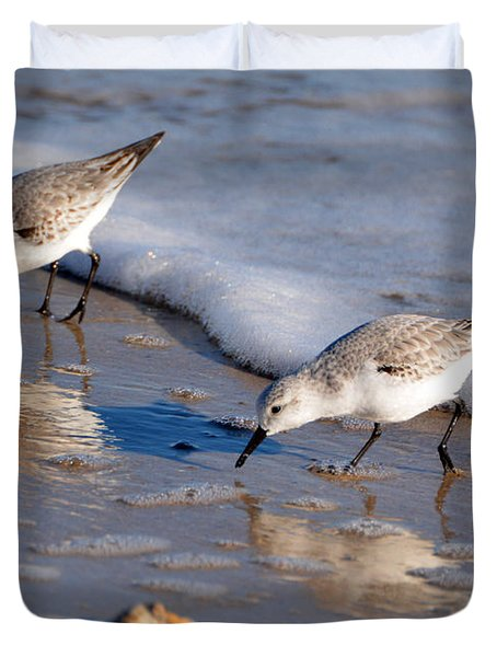 Birds Duvet Cover