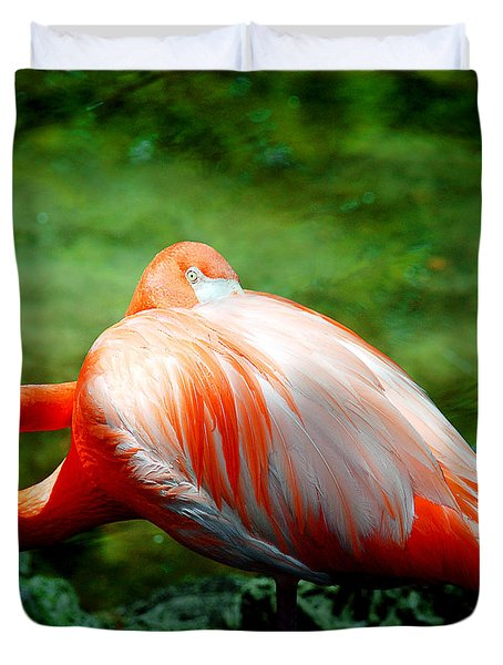 Bird's Eye View Duvet Cover