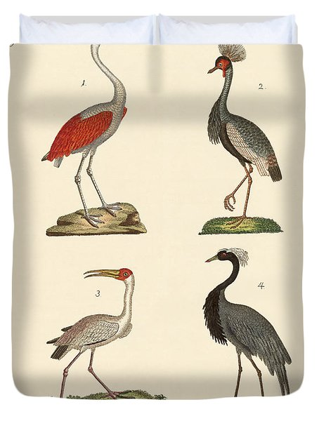 Birds From Hot Countries Duvet Cover