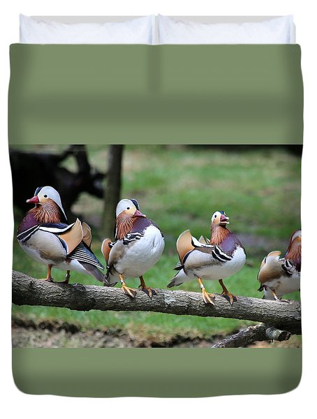 Birds Of A Feather Duvet Cover by Marty Fancy