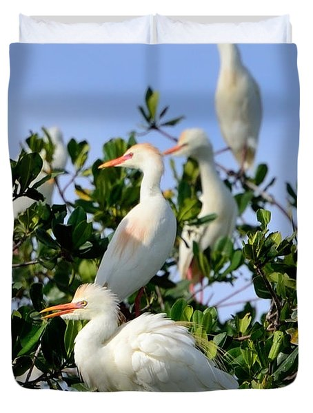 Birds Quartet Duvet Cover