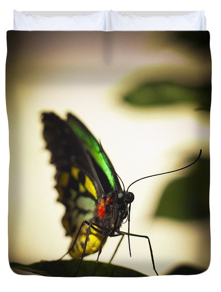 Birdwing Butterfly Duvet Cover by Bradley R Youngberg