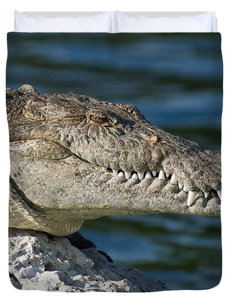 Duvet Cover featuring the photograph Biscayne National Park Florida American Crocodile by Paul Fearn