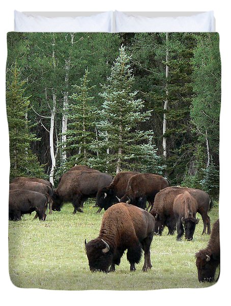 Bison At North Rim Duvet Cover by Laurel Powell