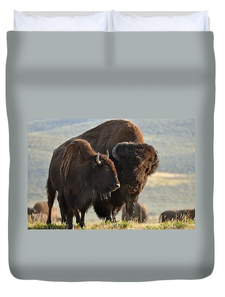 Bison Friends Duvet Cover