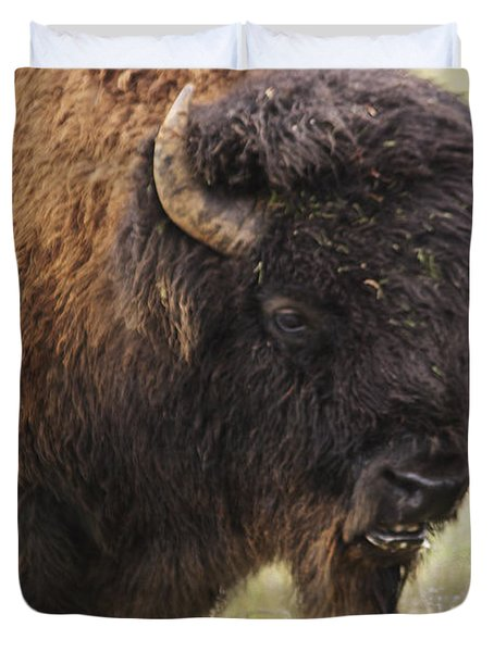 Bison From Yellowstone Duvet Cover by Belinda Greb