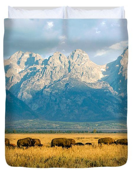 Bison Herd Duvet Cover