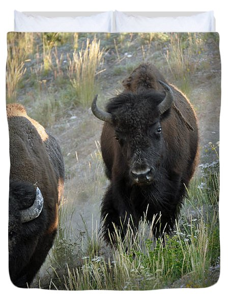 Bison On The Run Duvet Cover by Bruce Gourley