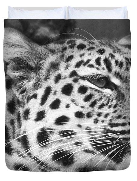 Black And White - Amur Leopard Portrait Duvet Cover