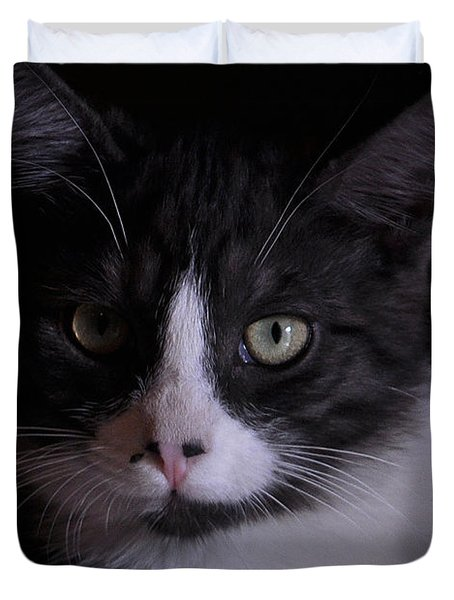 Black And White Cat Duvet Cover by Debby Pueschel