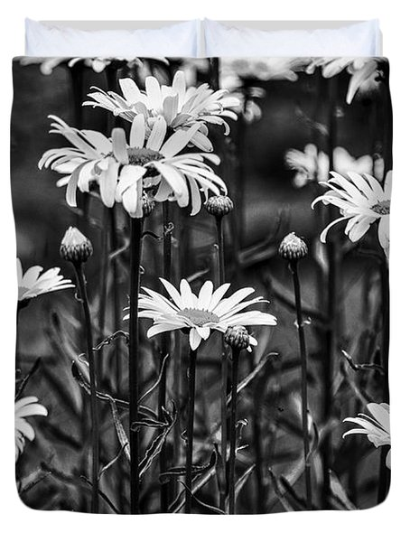 Black And White Daisies Duvet Cover by Mary Carol Story