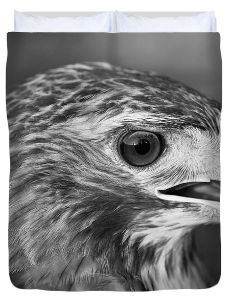Black And White Hawk Portrait Duvet Cover by Dan Sproul
