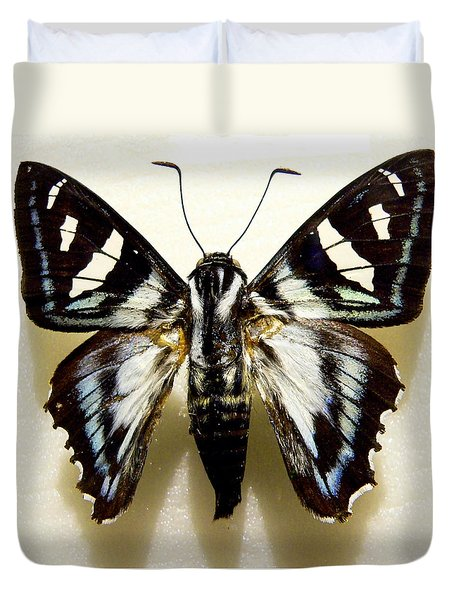 Duvet Cover featuring the photograph Black And White Moth by Rosalie Scanlon