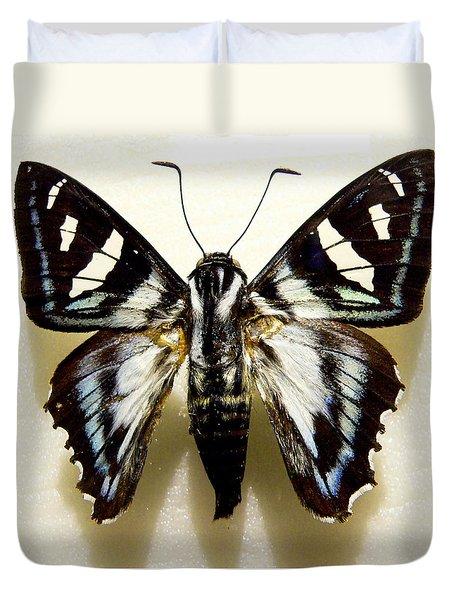 Black And White Moth Duvet Cover by Rosalie Scanlon