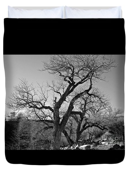 Duvet Cover featuring the photograph Black And White Oak by Janice Westerberg