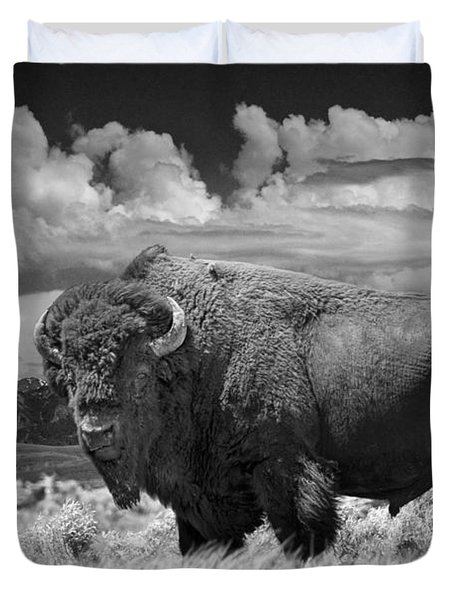 Black And White Photograph Of An American Buffalo Duvet Cover