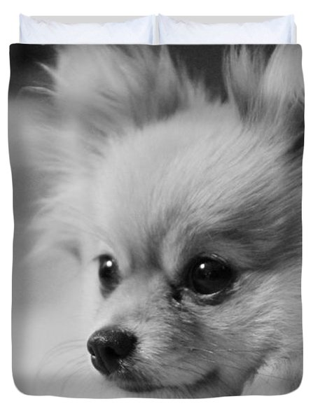 Black And White Portrait Of Pixie The Pomeranian Duvet Cover