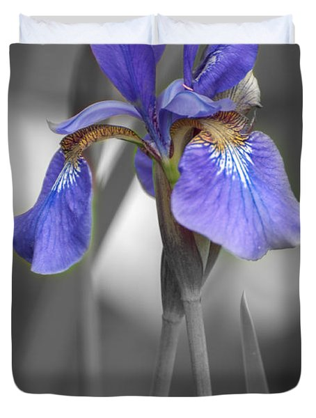 Black And White Purple Iris Duvet Cover by Brenda Jacobs