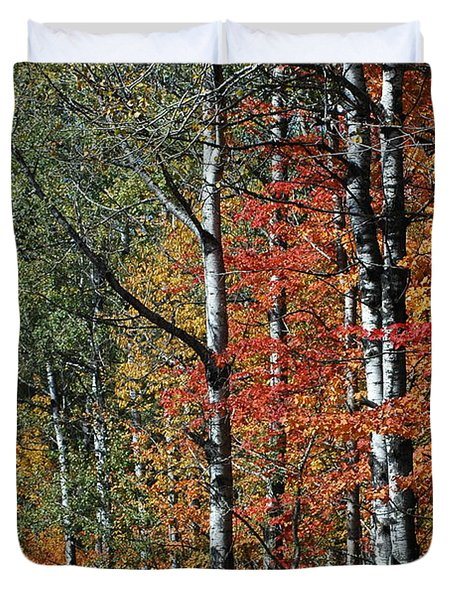 Black And White With Fall Colors Duvet Cover