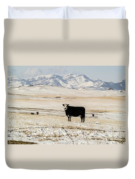 Black Baldy Cows Duvet Cover