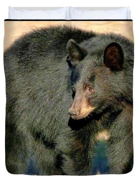 Black Bear 3 Duvet Cover by Will Borden