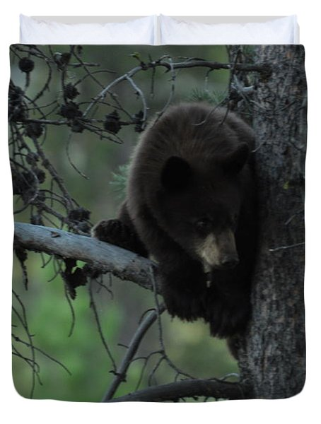 Black Bear Cub In Tree Duvet Cover