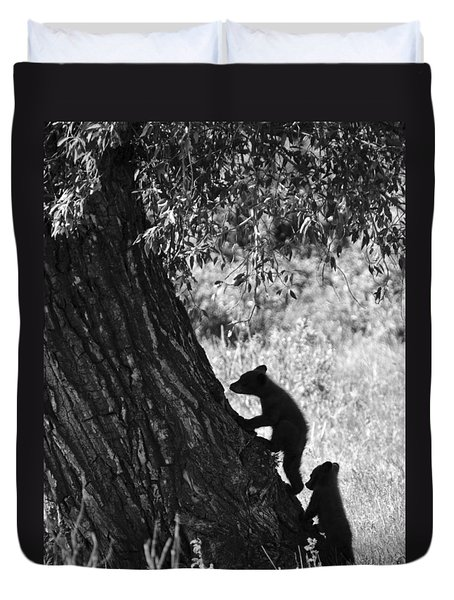 Black Bear Cubs Climbing A Tree Duvet Cover