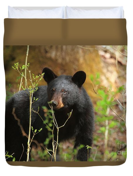 Duvet Cover featuring the photograph Black Bear by Geraldine DeBoer