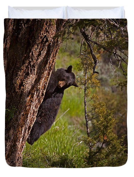 Duvet Cover featuring the photograph Black Bear In A Tree by J L Woody Wooden