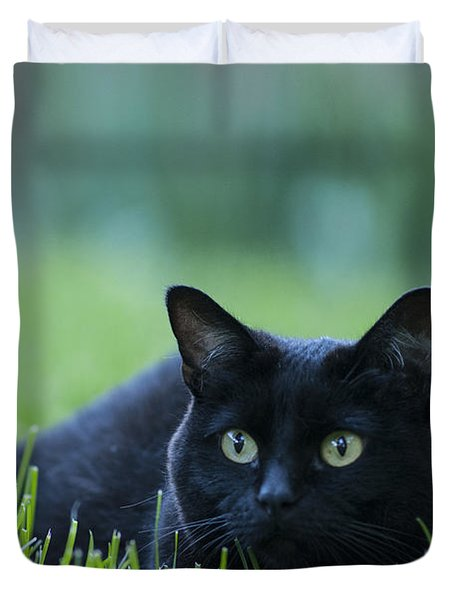 Black Cat Duvet Cover