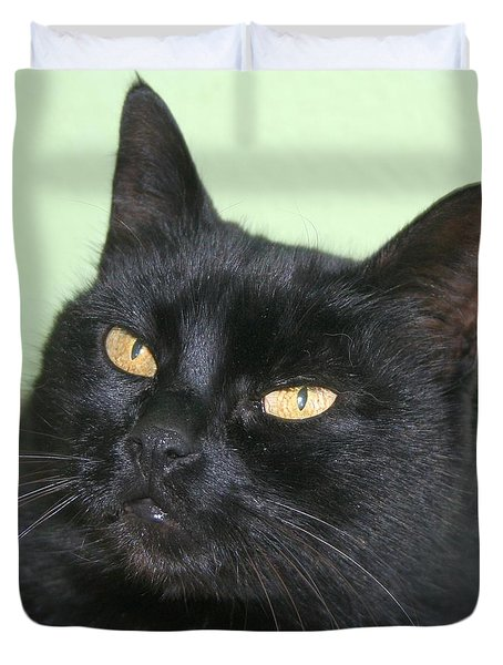 Black Cat Duvet Cover by Tracey Harrington-Simpson
