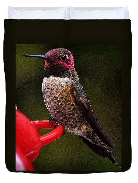 Duvet Cover featuring the photograph Black Chinned Male Hummingbird by Jay Milo