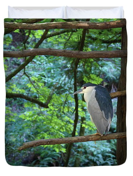 Black-crowned Night Heron Duvet Cover