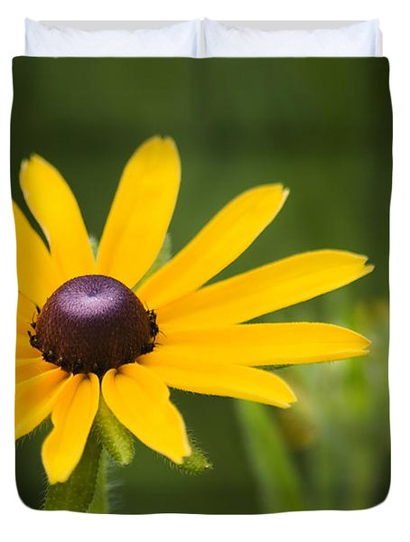 Black Eyed Susan Duvet Cover by Adam Romanowicz