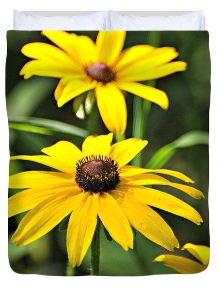Black Eyed Susan Duvet Cover by Marty Koch