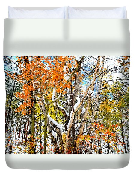 Black Hills Entanglement Duvet Cover by Clarice  Lakota