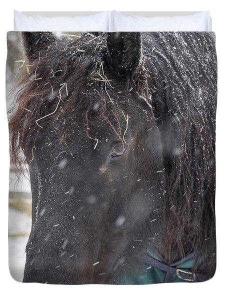 Black Horse In Snow Duvet Cover