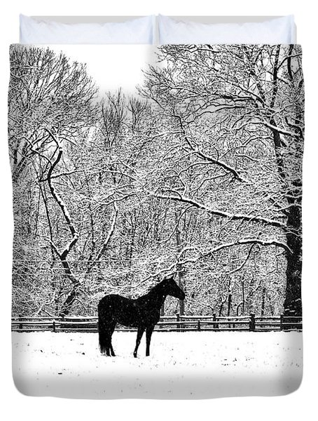 Black Horse In The Snow Duvet Cover by Bill Cannon