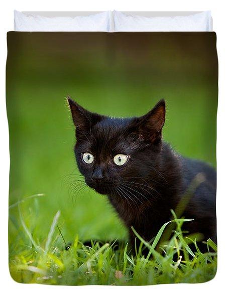 Black Kitten Duvet Cover