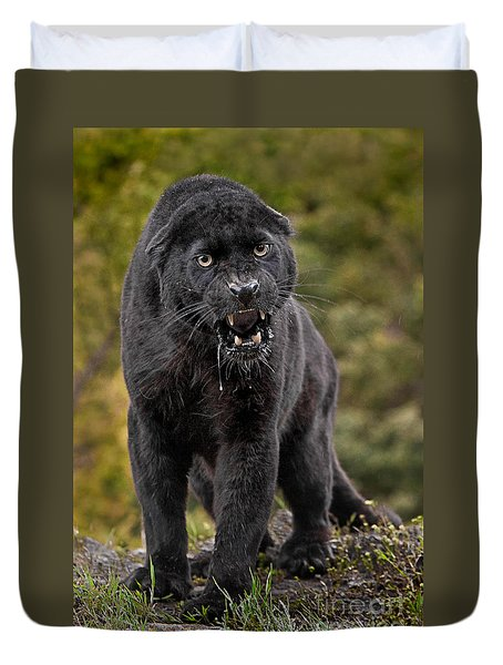 Black Panther Duvet Cover by Jerry Fornarotto