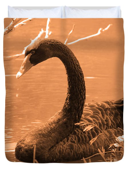 Duvet Cover featuring the photograph Black Swan by Leticia Latocki