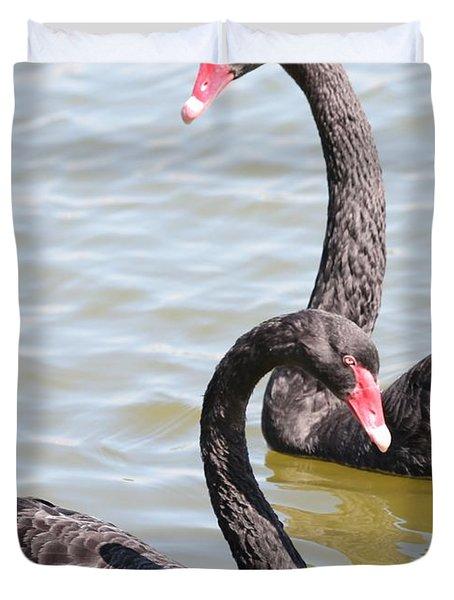 Black Swan Pair Duvet Cover by Carol Groenen