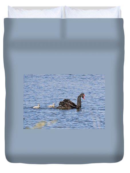 Black Swans Duvet Cover by Steven Ralser